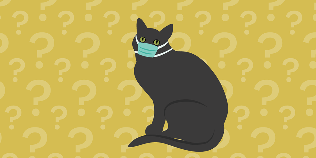 Illustration of a black cat against a background of question marks wearing a PPE mask
