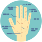 Illustration of a hand with dotted lines and labeled points.